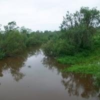 река Барсук летом