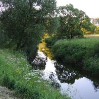 Река Веневка
