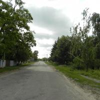 Дорога из центра