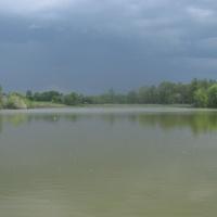 д. Люшнево Школьное озеро