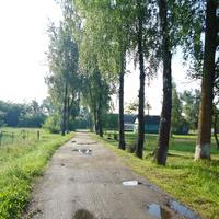 Дорога к  амбулатории.