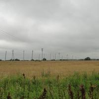 Мясное, поле у Каширки