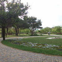 Парк Ореховая роща