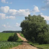 Дорога на Жуховичи