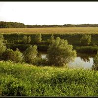 Полевой пруд