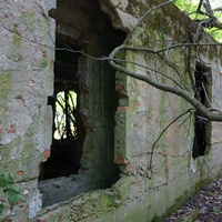 Заброшенное строение (бывшая территория усадьбы Шаховских, позже пионерского лагеря)