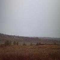 Луга на подъезде к Нарышкино.
