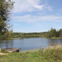 пруд в Овчино