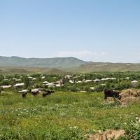 Встреча с армянскими пастухами