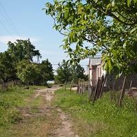 Сельская улочка