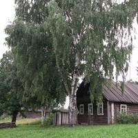 Жерновка,дом Степановых