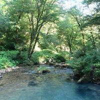 В ущелье Симона Кананита (реки Псырцха)
