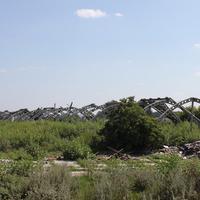 Пристень. Старая разрушенная ферма.