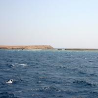 Красное море, остров
