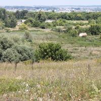 Ивановка. Вид на село с трассы.