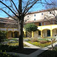 Arles. Au coin de Van Gogh dans l'ancien hôpital