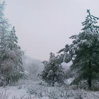 Луг зимой. Около Псла