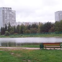 Вид на Школьное озеро