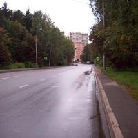 Дорога между Школьным озером и лесоларком
