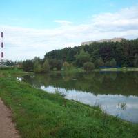 Вид на Школьное озеро со стороны 10го микрорайона