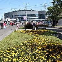 На проспекте Большевиков