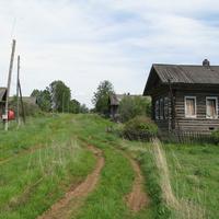 д. Ступники (июнь 2009г.)