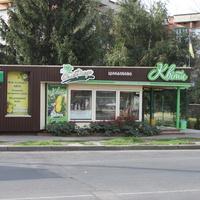"""Полтава. Магазин """"Цветы""""."""