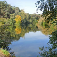 Осень в Серебряном бору.