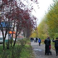 Северодвинск. Улица Орджоникидзе.