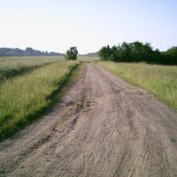 Дорога на Буданово