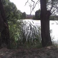 пос.Сертякино пруд