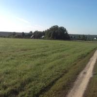 поле за Антипином