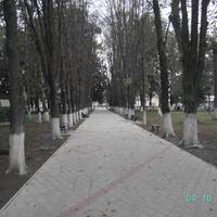 Парк в сентябре