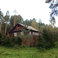 Пансионат Березка. Домик в лесу.