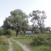 Сафроново. Основная улица