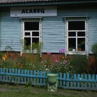 станция Осовец в 4 км от деревни