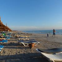 Любители утренней пробежки по пляжу