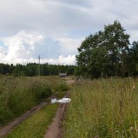Дорога в Ильмовицы