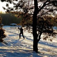 Великолепный  отдых на лыжах в окрестностях микрорайона Заря.