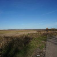 Игнатьево, поле