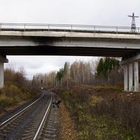 Любница. Автомобильный мост через жд пути.