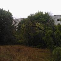 Заброшенная пятиэтажка в Полесском