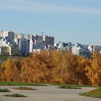 Вид на 8-й мкр. из Митинского парка