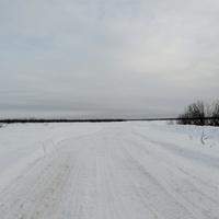 Югра. Западная Сибирь. Зимник
