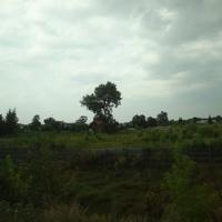 Вид из окна поезда