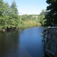 д. Сумское У караулки на старом канале