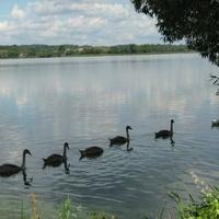 Озеро Себежское