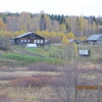 Летом в селе живут дачники