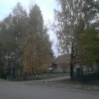 Администрация Шангского сельского поселения