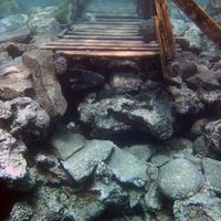 """""""Дверь"""" в подводный мир.  Мостки для захода в воду"""